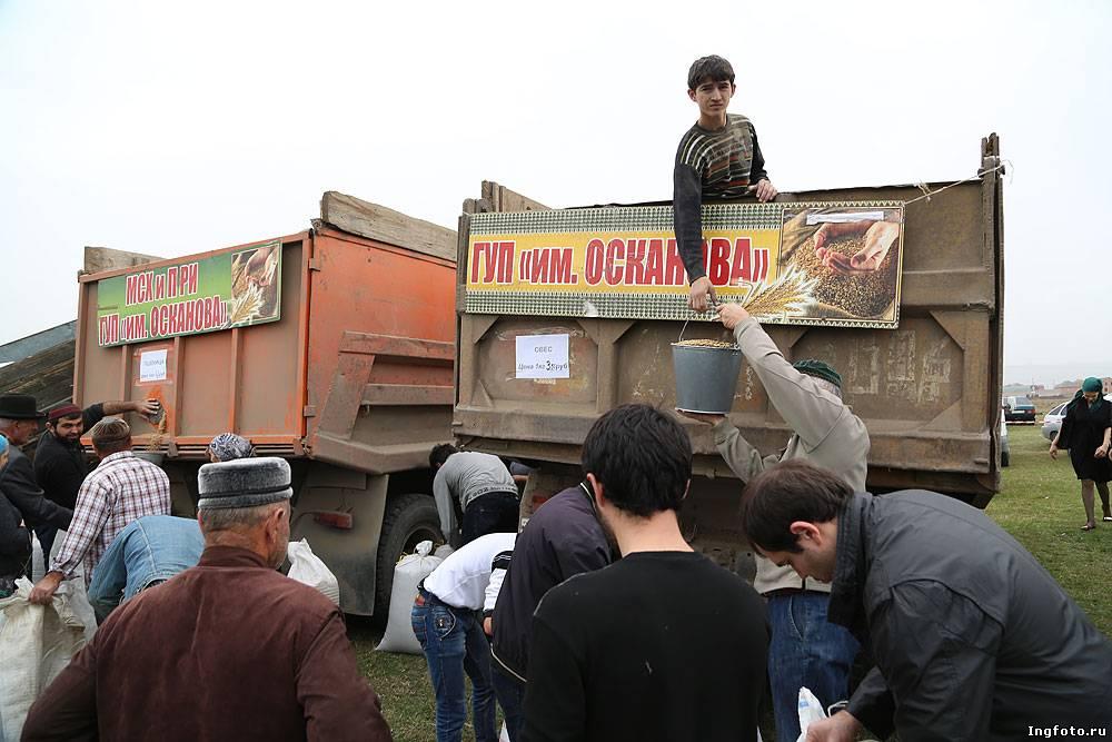 День сельского труженника в Ингушетии